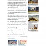 Dmitri Chavkerov AD HOC NEWS news story on long term trading success